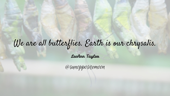 earth is our chrysalis SOM