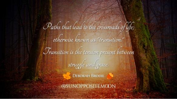 transition SOM